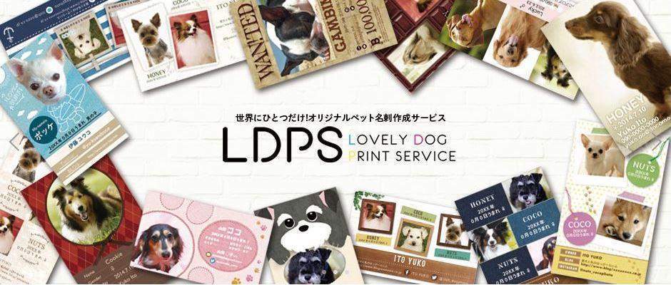 ldps_banner